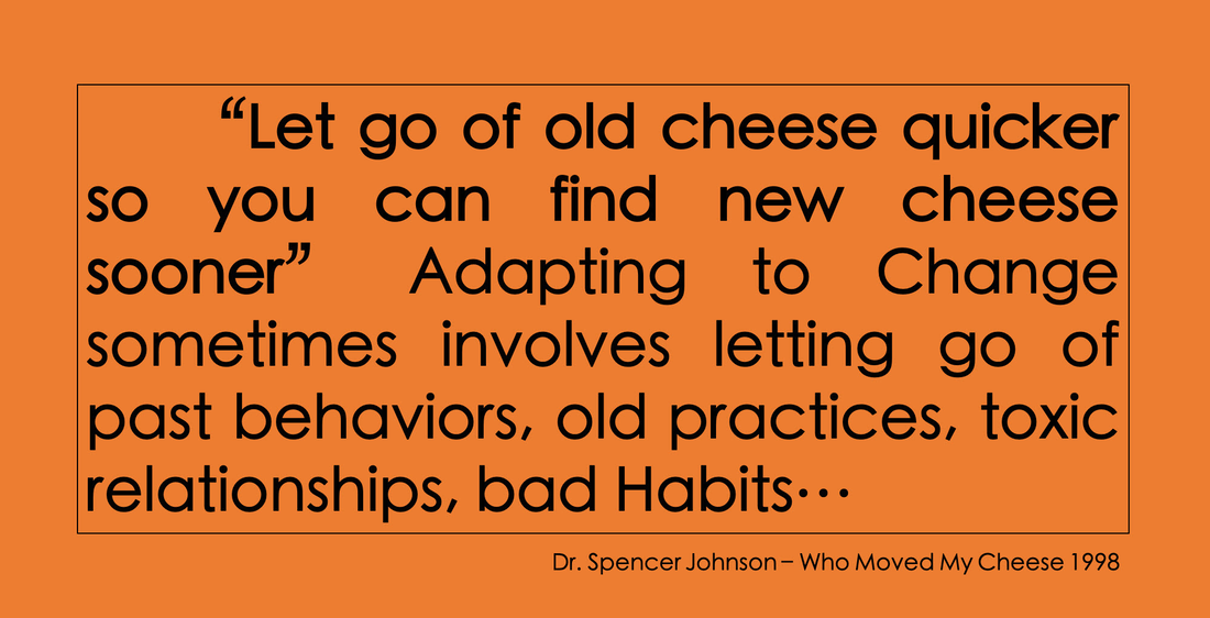 Rule 5: let go of old cheese quicker so you can find new cheese sooner